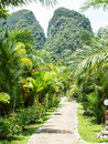 Lush green tropical retreat resort alley at khao sok lake and mountains krabi thailand Stock Images