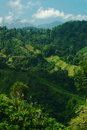 Lush Hillside in Northern Colombia Stock Photos