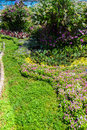 Lush landscaped garden with flowerbed and colorful plants Royalty Free Stock Photo
