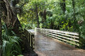 Lush southern nature at the Rainbow Springs, Florida, USA Royalty Free Stock Photo