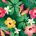 Lush tropical flowers seamless pattern on a green background Royalty Free Stock Photography