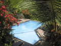 Lush tropical gardens around small swimming pool in resot ubud bali indonesia Stock Image