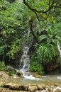Lush tropical rain forest waterfall in the Himalayas Royalty Free Stock Photo