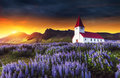 Lutheran church in Vik. Fantastic sunset. Iceland Royalty Free Stock Photo
