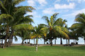 Lux le morn hotel beach mauritius africa Stock Photography