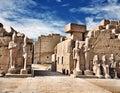 Luxor Karnak Temple, ancient Egyptian pharaoh sculptures.