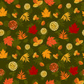 Luxuriant seamless pattern with autumn leaves different abstract berries and dark background silhouettes vector is eps all Stock Photography