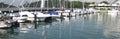 Luxurious Yachts at Marina