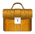 Luxury brown briefcase Stock Photography