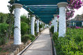 Luxury corridor throughout a mediterranean garden and beautiful through the in the kallithea on rhodes island across of the Stock Photography