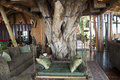 Luxury safari lodge Royalty Free Stock Photo
