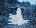Luxury Snow Queen