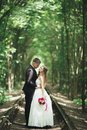 Luxury stylish young bride and groom on the background spring sunny green forest