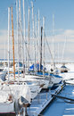 Luxury yachts on the coast in winter season tallinn marina Royalty Free Stock Photos