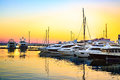 Luxury yachts docked in sea port at colorful sunset.