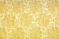 Luxury yellow fabric texture Royalty Free Stock Image
