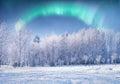image photo : Northern Lights.