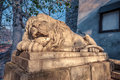 Lviv lion sculpture on city ukraine Royalty Free Stock Image