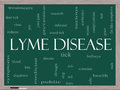 Lyme disease word cloud concept on a blackboard with great terms such as deer tick blood bullseye bite and more Stock Photos