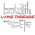 Lyme disease word cloud concept in red caps with great terms such as deer tick blood bullseye bite and more Royalty Free Stock Images
