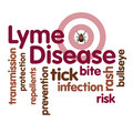 Lyme disease word cloud tick bulls eye rash graphic illustration text isolated on white infection risk transmission protection Stock Image