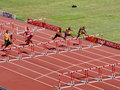 The m hurdles preliminary in the iaaf world athletics championship in beijing on aug Stock Images