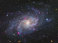 M33 Triangulum Galaxy Royalty Free Stock Photo