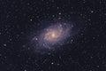 M33 Triangulum Galaxy Royalty Free Stock Photo