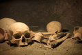 Macabre archaeological scene frightening human bones on ancient site Royalty Free Stock Image