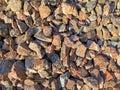 Macadam multicolored gravel in the bright sun Stock Images