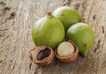 Macadamia in husk and shell group of on wood background Royalty Free Stock Image