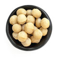 Macadamia Nuts in Black Bowl Overhead View Isolated Royalty Free Stock Photo