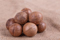 Macadamia nuts brown seed on sack cloth background Stock Photography