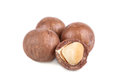 Macadamia nuts brown seed on white background Royalty Free Stock Image