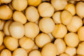 Macadamia Nuts Food Protein Royalty Free Stock Image