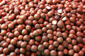 Macadamia nuts pile of close up background Stock Images