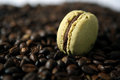 Macaron and coffee beans beige as background Stock Images