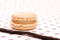 Macaron with flavour of vanilla Stock Photo