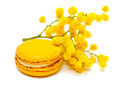 Macaron and mimosa composition of yellow on white background Stock Photography
