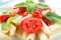 Macaroni close-up Royalty Free Stock Photo