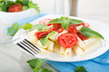 Macaroni with sauce vegetables and green mint Royalty Free Stock Photography