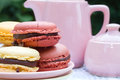 Macarons and teapot pink sugar bowl in the garden Stock Photos