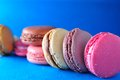 Macaroon baked confection cookies macro Stock Photo