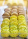 Macaroon cookies assortment of multicolored Royalty Free Stock Image