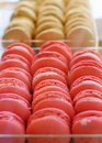 Macaroon cookies assortment of multicolored Stock Image