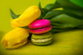 Macaroons food with tulips yellow background for valentines mother woman day easter with love