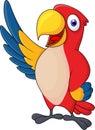 Macaw bird carton waving Royalty Free Stock Photo