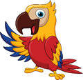 Macaw bird cartoon waving illustration of Royalty Free Stock Photo