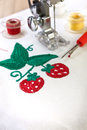 Machine embroidery Royalty Free Stock Photo