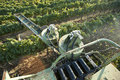 Machine harvests wine grapes Stock Photography